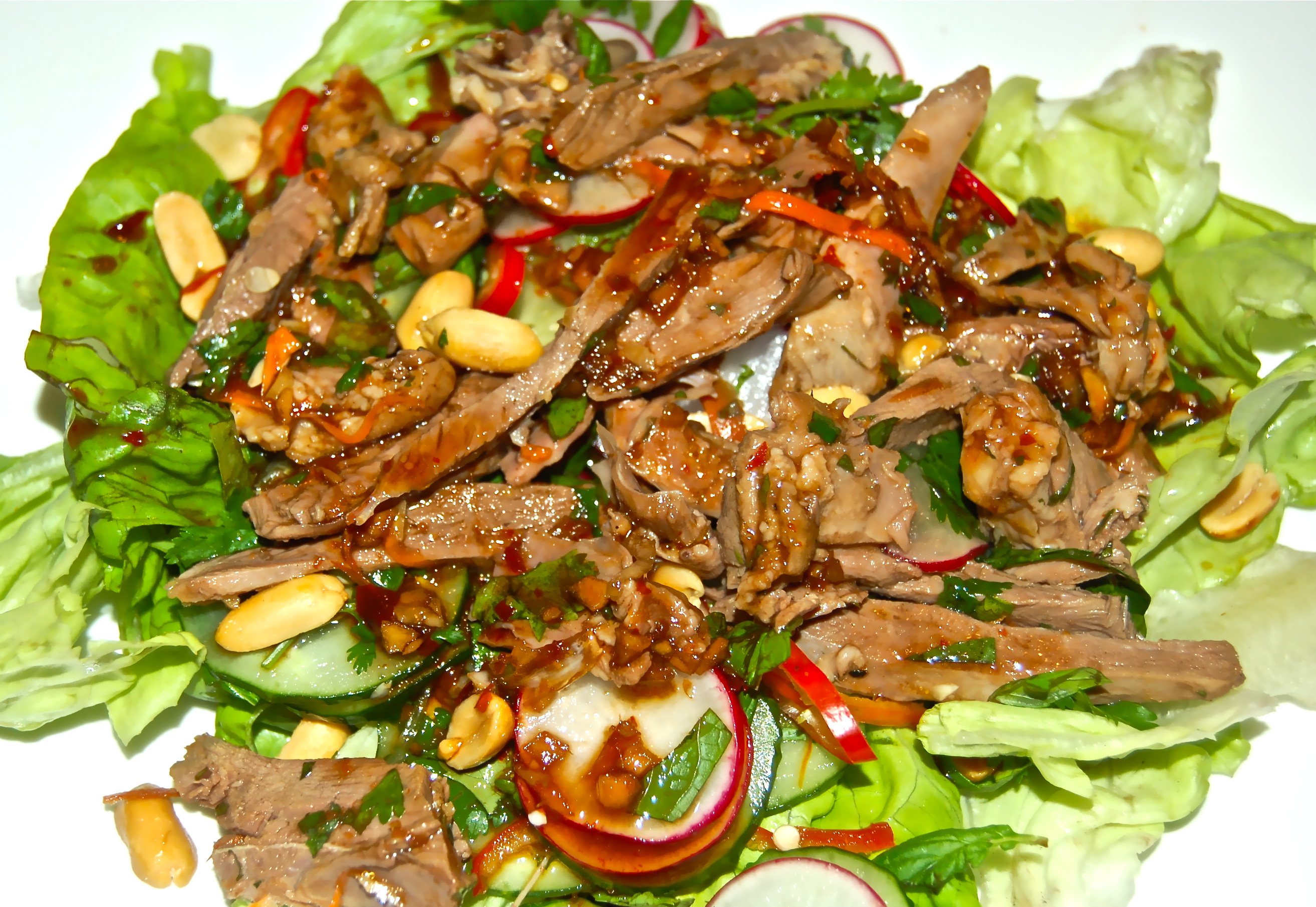 Vietnamese Duck Salad With Cucumber, Radishes  Peanuts -2036